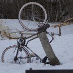 bike-239882_640